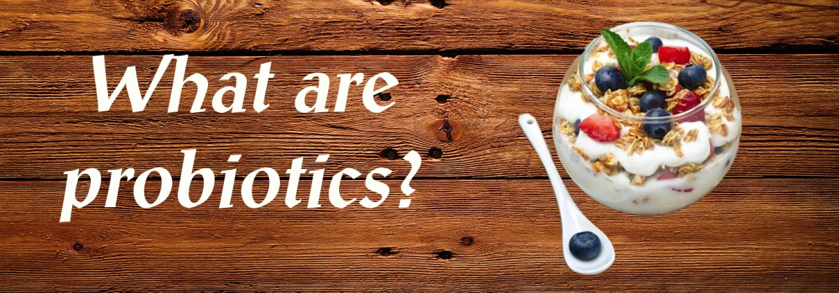 What are probiotics? | The Function of Enzymes in Nutrition
